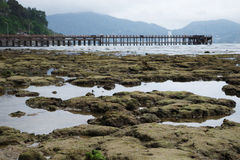 Coastline there are many rocks after low tide Royalty Free Stock Photo