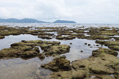 Coastline there are many rocks after low tide Royalty Free Stock Image