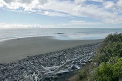 View to port Taranaki from Waiwhakaiho stock image