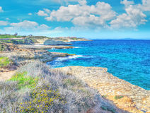 Coastline under clouds Stock Image