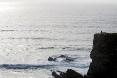 Lonely man on cliff. Coastline view of a lonely man on top of cliff gazing the ocean Royalty Free Stock Photo