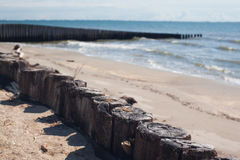 Coastline. Wooden breakwater on the sand beach with sea and sky Stock Images