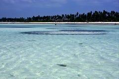 coastline in zanzibar Royalty Free Stock Images