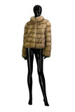 Coat female mannequin. white and transparent background. royalty free stock images