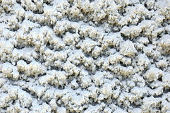 Coat of ice. Processing surface of a building. Thick coat of ice Stock Photography