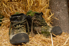 Coated Mountain Shoes - Upcycling Royalty Free Stock Images