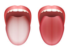 Coated Tongue Clean Tongue. Coated white tongue and clean healthy tongue by comparison - isolated vector illustration on white background Royalty Free Stock Photography