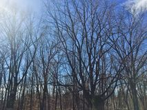 Coatesville Pennsylvania. Top of the mountain grave yard Royalty Free Stock Image