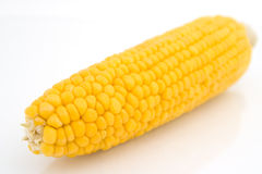 Cob corn Stock Photos