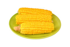 Cob of corn on green plate Stock Photo