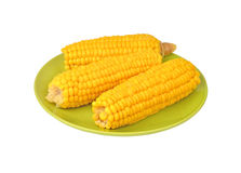 Cob of corn on green plate Royalty Free Stock Photos