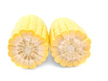 Cob,grain maize Stock Photography
