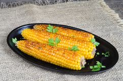 On the cob grilled corn Stock Photos