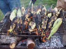 cob kukurudza piec na grillu Fotografia Royalty Free