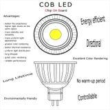 COB led bulb isolated vector royalty free stock photos