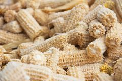 Cob meal Ground corn cob Royalty Free Stock Images