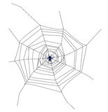 Cob web. Spider spinning a cob web mounted on a white background Stock Photos