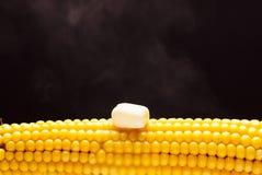 The cob of yellow boiled corn Stock Photo