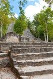 coba玛雅墨西哥废墟 免版税库存图片