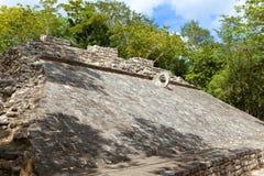 coba玛雅墨西哥废墟 免版税图库摄影