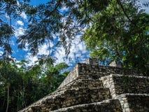 coba玛雅废墟 图库摄影