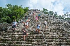 COBA, МЕКСИКА - 13-ое ноября 2013: Группа в составе туристы взбирающся никакая Стоковое Изображение RF
