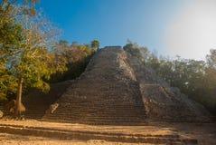 Coba, Мексика, Юкатан: Майяская пирамида Nohoch Mul в Coba Вверх 120 узкое и крутые шаги Стоковое Изображение