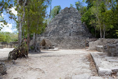 Coba Ancient Mayan Ruin in Mexico. Royalty Free Stock Photography