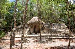 Coba Ancient Mayan Ruin in Mexico. Stock Photo