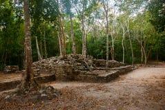 Coba is een archeologisch gebied en een beroemd oriëntatiepunt van het Schiereiland van Yucatan mexico yucatan royalty-vrije stock foto's