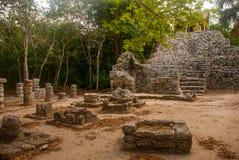 Coba is een archeologisch gebied en een beroemd oriëntatiepunt van het Schiereiland van Yucatan mexico yucatan royalty-vrije stock foto
