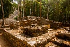 Coba is een archeologisch gebied en een beroemd oriëntatiepunt van het Schiereiland van Yucatan mexico yucatan stock foto's