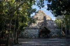 Coba Maya Ruins in Mexiko Yucatan innerhalb des Dschungels lizenzfreie stockfotos