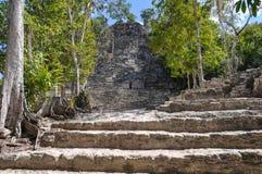 Coba Mayan Ruins Royalty Free Stock Image