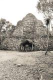 Coba Mayan Ruins Royalty Free Stock Photos