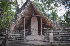 Coba Mayan Ruins Royalty Free Stock Images