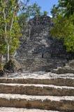 Coba Mayan Ruins Stock Images