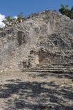Coba Mayan Ruins Royalty Free Stock Photo
