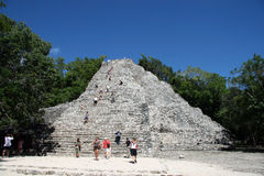 Coba Mayan temple Royalty Free Stock Image