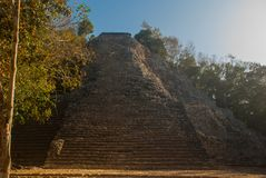 Coba, Messico, Yucatan: Piramide maya di Nohoch Mul in Coba Di sopra sono 120 stretti ed i punti ripidi Immagini Stock