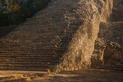 Coba, Messico, Yucatan: Piramide maya di Nohoch Mul in Coba Di sopra sono 120 stretti ed i punti ripidi Fotografia Stock Libera da Diritti