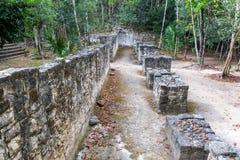 Coba, Mexico Ruins Stock Image