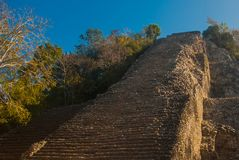 Coba, Mexico, Yucatan: Mayan Nohoch Mul pyramid in Coba. Upstairs are 120 narrow and steep steps. Climbing to the top is the most popular activity of tourists Royalty Free Stock Photography