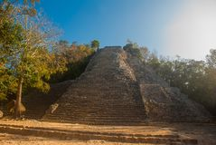 Coba, Mexico, Yucatan: Mayan Nohoch Mul pyramid in Coba. Upstairs are 120 narrow and steep steps. Climbing to the top is the most popular activity of tourists Stock Image