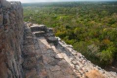 Coba Mexico, Yucatan: Mayan Nohoch Mul pyramid i Coba Är uppför trappan smala 120 och branta moment Arkivbilder