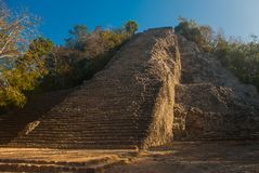 Coba, Mexico, Yucatan: Mayan Nohoch Mul pyramid in Coba. Upstairs are 120 narrow and steep steps. Climbing to the top is the most popular activity of tourists Stock Photo