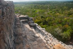 Coba, Mexico, Yucatan: Mayan Nohoch Mul pyramid in Coba. Upstairs are 120 narrow and steep steps. Climbing to the top is the most popular activity of tourists Stock Images