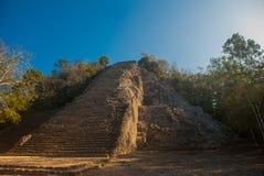 Coba, Mexico, Yucatan: Mayan piramide van Nohoch Mul in Coba Boven zijn 120 smalle en steile stappen Stock Foto's