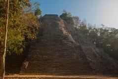 Coba, Mexique, Yucatan : Pyramide maya de Nohoch Mul dans Coba Sont en haut 120 étroits et étapes raides Images stock