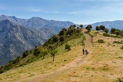 两条远足者和狗在足迹在中篇小说附近在Co的Balagne地区 库存照片